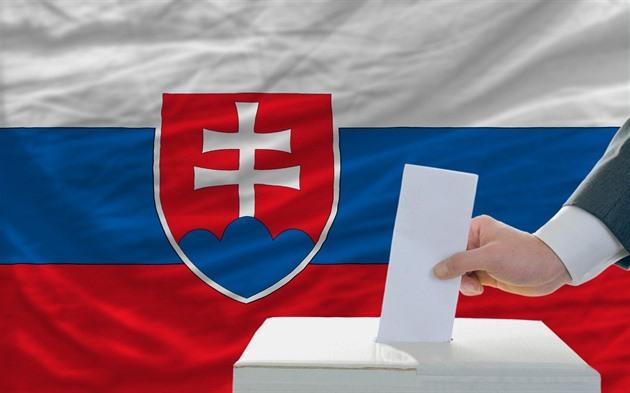 Voľby prezidenta: 25. február je posledný deň na doručenie žiadosti o zaslanie hlasovacieho preukazu poštou